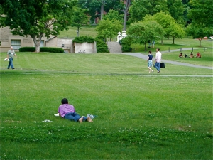 Summer on the Arts Quad - Cornell University