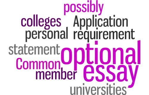 Common App optional essay 2015